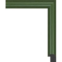 199N.RS.036 Пластиковый багет Зеленый