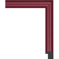 199N.RS.103 Пластиковый багет Красный