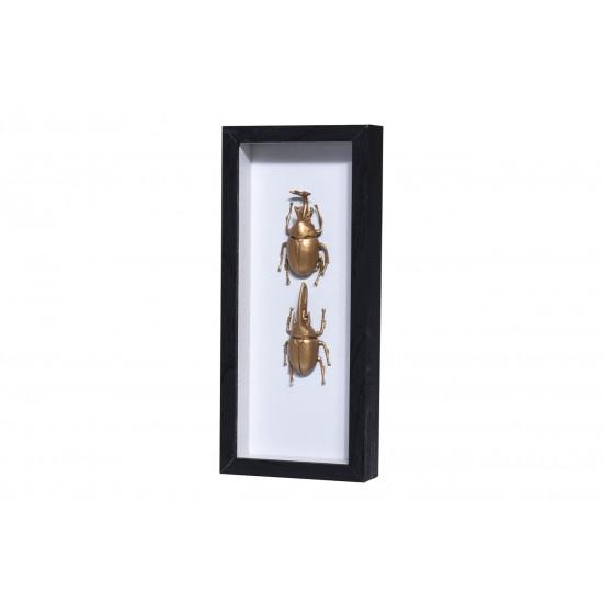 Настенный декор Жуки в рамке со стеклом HZ1300450 в интернет-магазине ROSESTAR фото