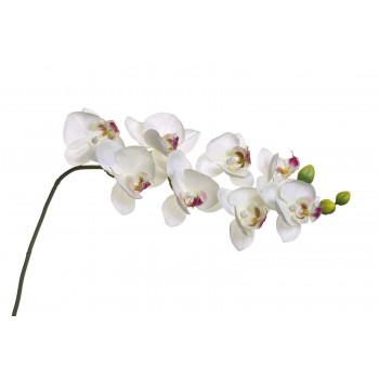 Орхидея белая 85 см 8J-1219S0003