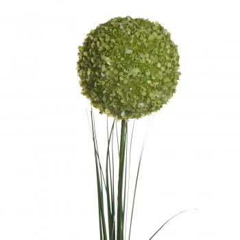 Алиум зеленый 80 см 8J-13RS0013