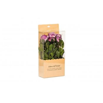 Цветочная композиция Розы фиолетовые стабилизированные в коробке 18х9х28 34JN-171