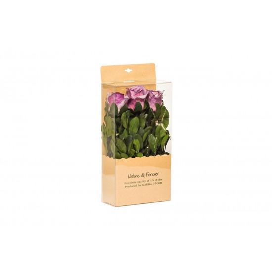 Цветочная композиция Розы фиолетовые стабилизированные в коробке 18х9х28 34JN-171 в интернет-магазине ROSESTAR фото