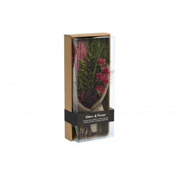 Цветочная композиция Красные гвоздики стабилизированные в коробке 17х41 34JN-032