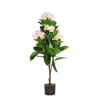 Гортензия бело-розовая в горшке, 113 см 29BJ-919-63