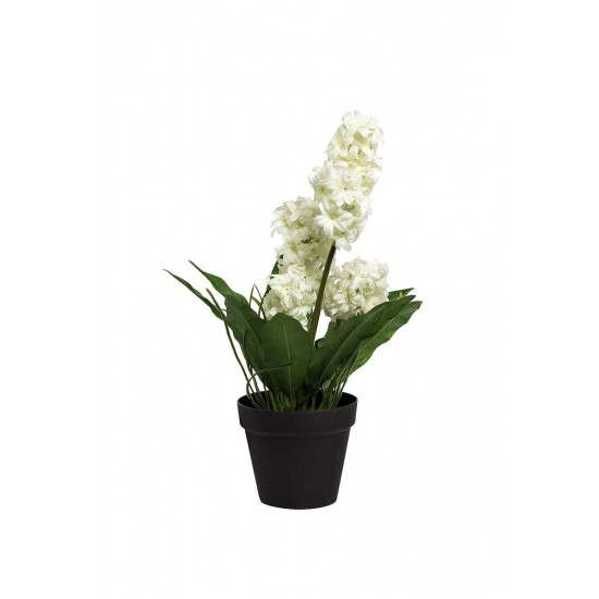 Гиацинт белый в горшочке 40 см 8J-K0013/2  в интернет-магазине ROSESTAR фото