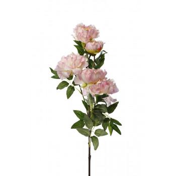 Пион кустовой нежно-розовый 94 см 9F28514-5240