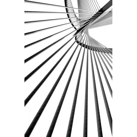 Постер Черное и белое-3 50*70см 54STR-BLACKWHITE3/ORG в интернет-магазине ROSESTAR фото