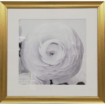 Постер Цветочное кружево в золотом багете 89VOR-FLOWER1