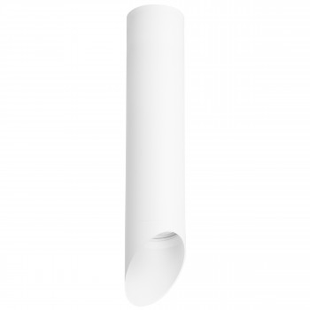 Накладной точечный светильник Rullo Rullo Lightstar R49636