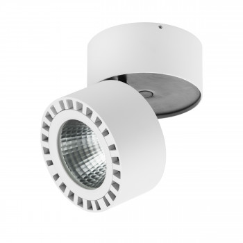 Светодиодный накладной светильник заливающего света Forte Lightstar 381364