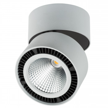 Светодиодный накладной светильник заливающего света Forte Muro Lightstar 213859