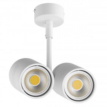 Накладной точечный светильник под заменяемые галогенные или LED лампы Rullo Lightstar 214446