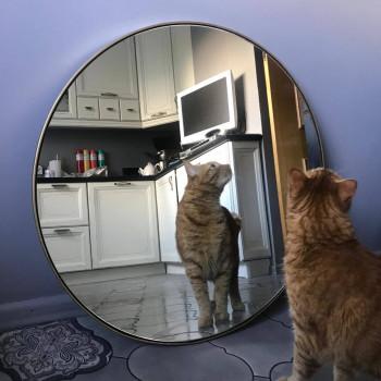 Круглое зеркало в металлической раме Ноул Латунь
